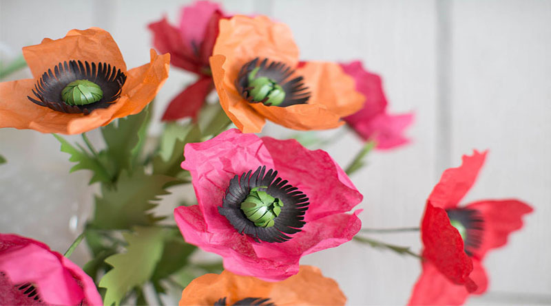 Cách làm hoa giấy bắt mắt cho bạn