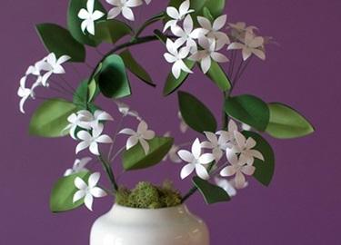 dạy làm hoa nhài bằng giấy