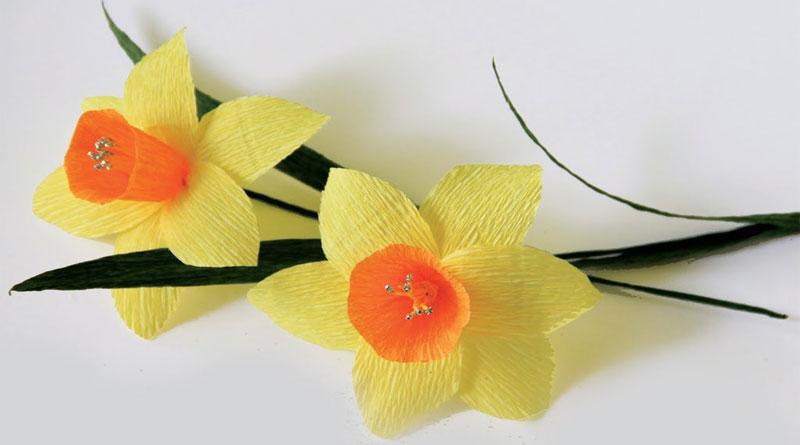 Hướng dẫn làm hoa giấy thủy tiên dễ thực hiện