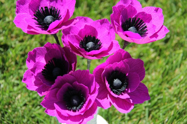cách làm bó hoa giấy poppy3