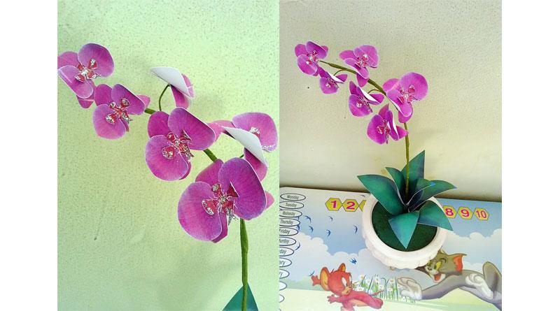 Làm hoa lan hồ điệp từ nguyên liệu giấy
