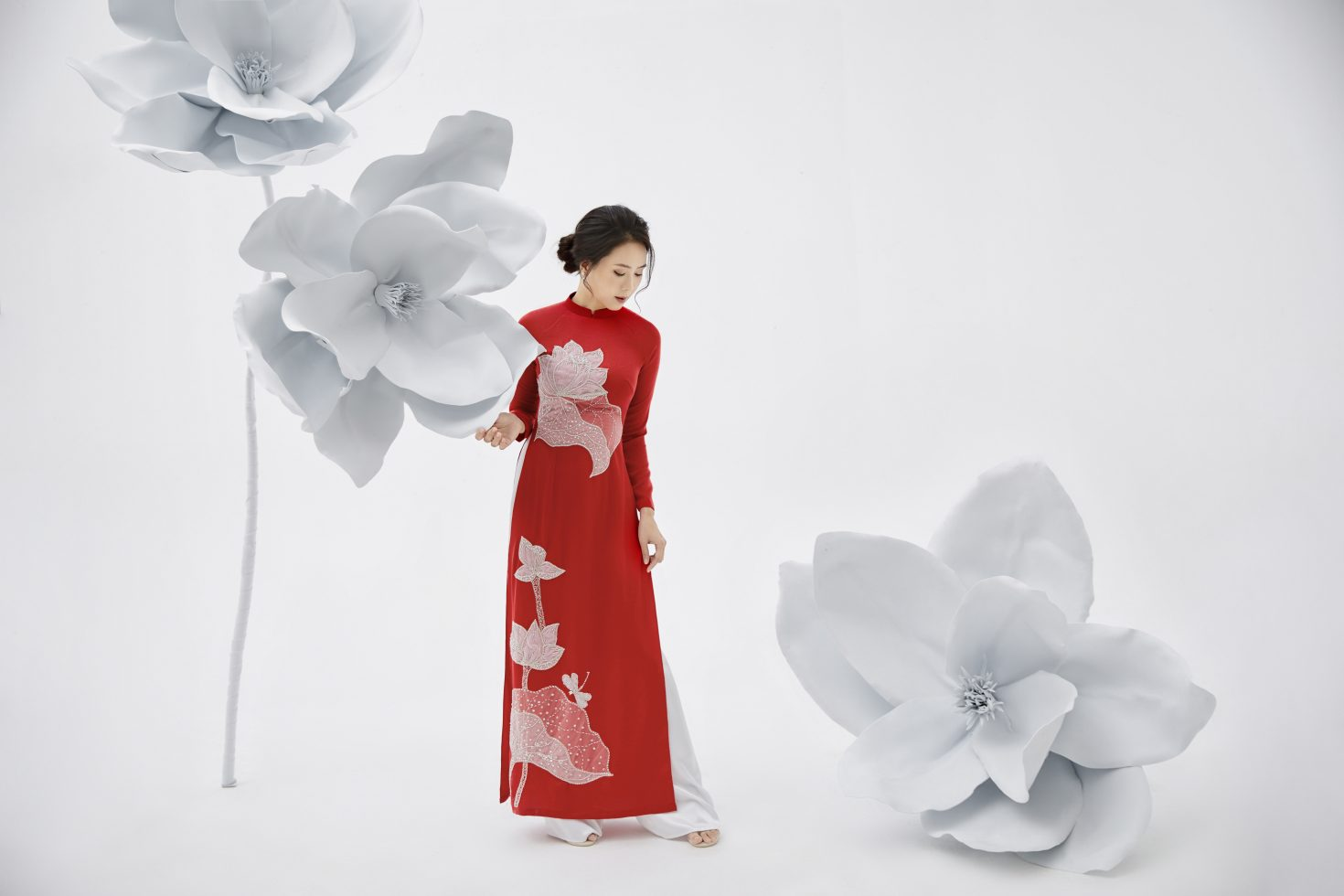Bộ sưu tập CÂY HOA KHỔNG LỒ được yêu thích tại Hoa giấy Suchin