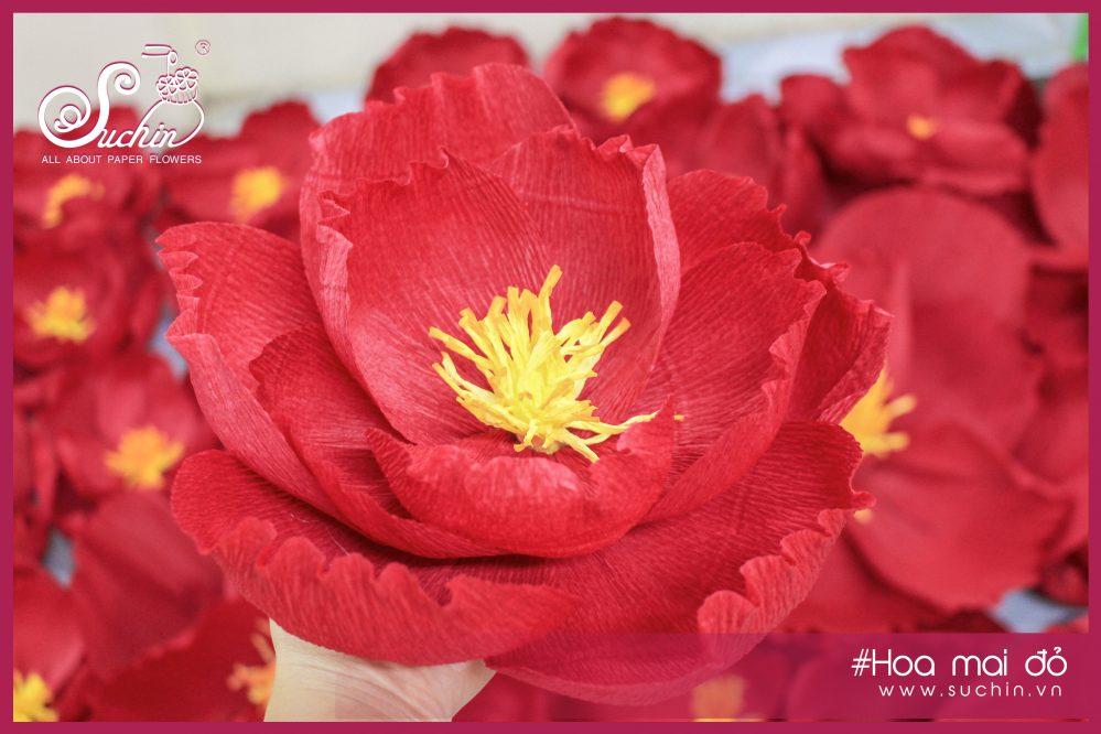 Hoa mai đỏ giấy nhún Ý cao cấp