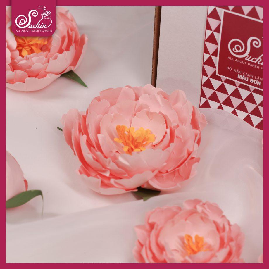 Bạn thích làm hoa giấy handmade nhưng không khéo tay?