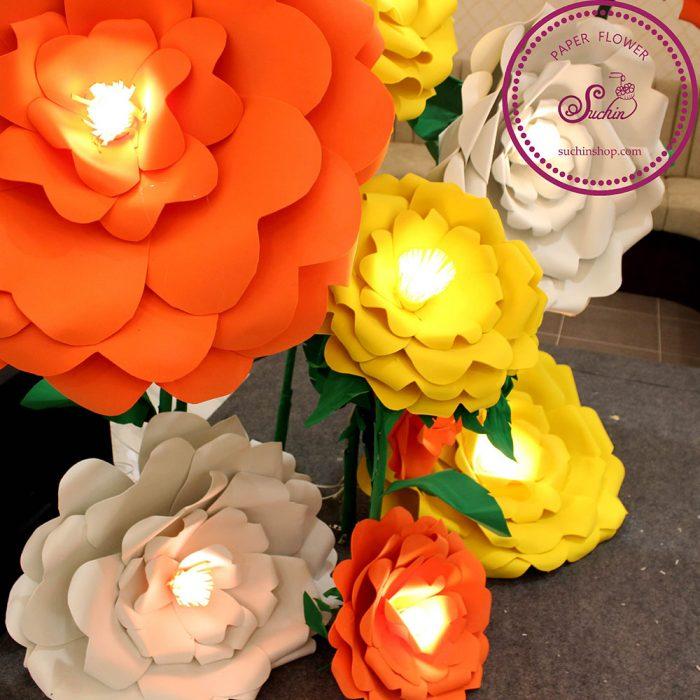 cây hoa mút xốp