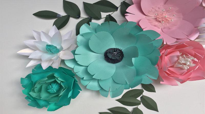 Hoa giấy đẹp, giá rẻ tại HN