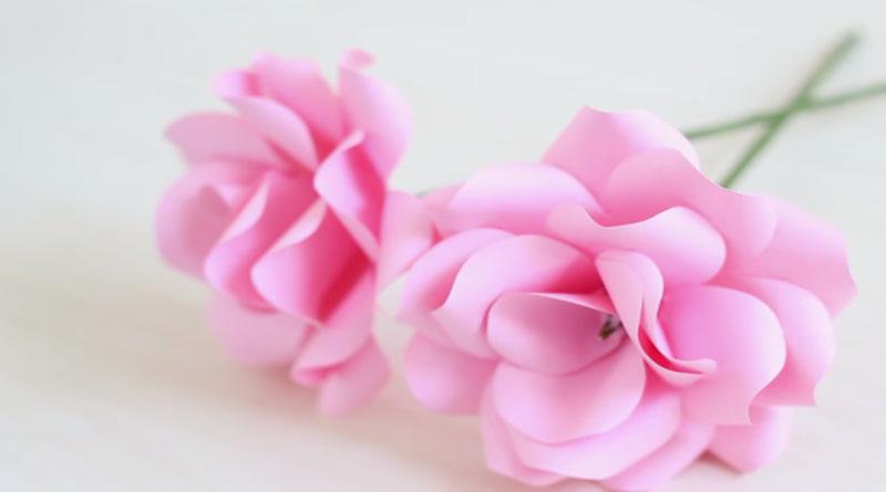Cách làm hoa hồng giấy siêu cute