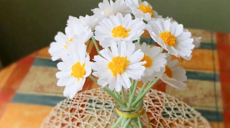 Hoa giấy và phong thủy cho tuổi của bạn