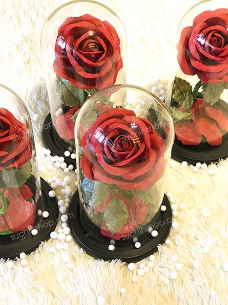 Hoa hồng bất tử1