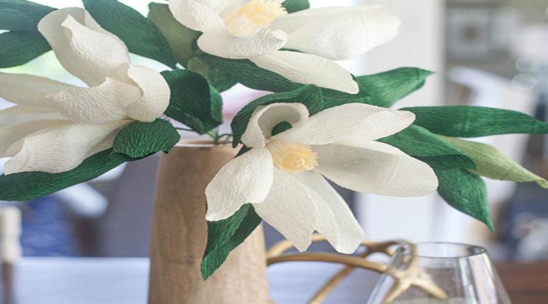 Dạy làm hoa giấy, hoa mộc lan