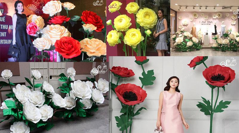 Tổng hợp những cây hoa giấy đẹp nhất tại Hà Nội