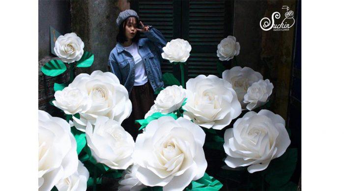 phong cách hoa giấy khổng lồ