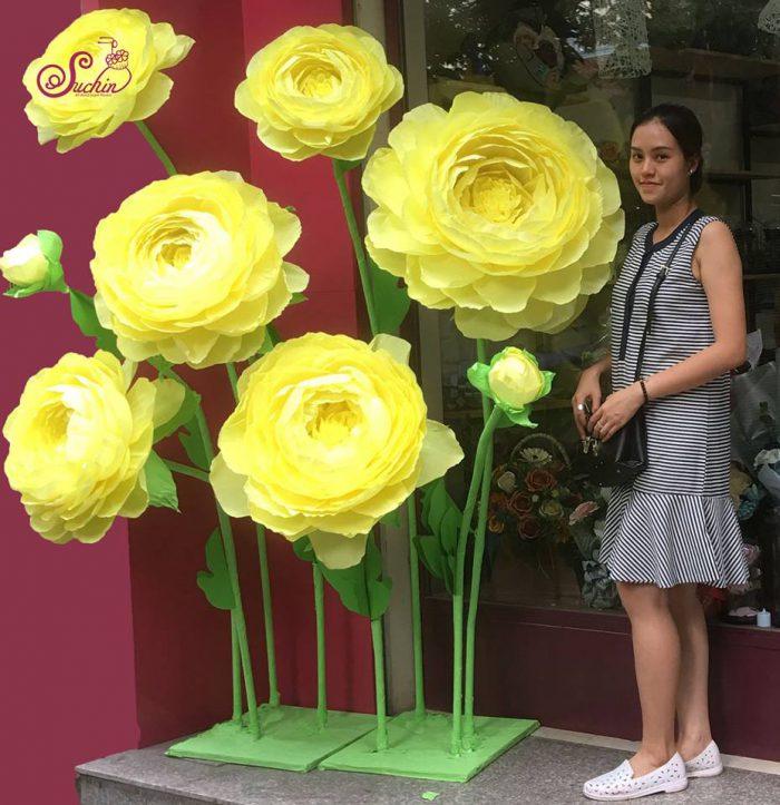 Hoa giấy đẹp ở Hà Nội rẻ