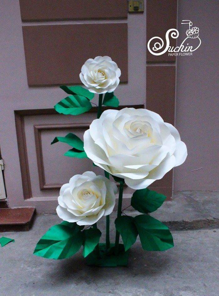 các loại hoa giấy handmade suchin