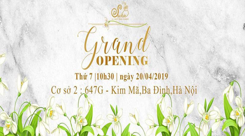 Hoa giấy Suchin- Grand Opening