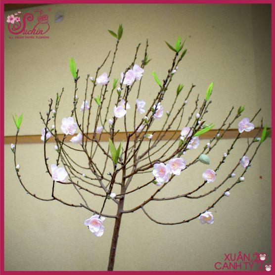 Cành hoa đào phai