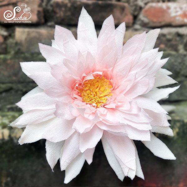 Hoa giấy nhún trang trí