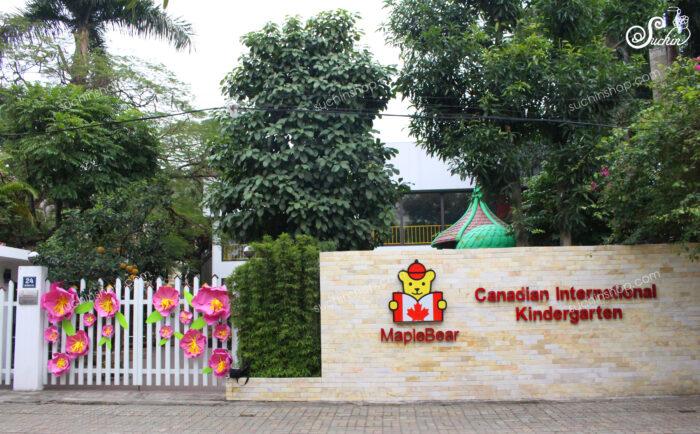 Hoa giấy Suchin mừng khai giảng Vinschool