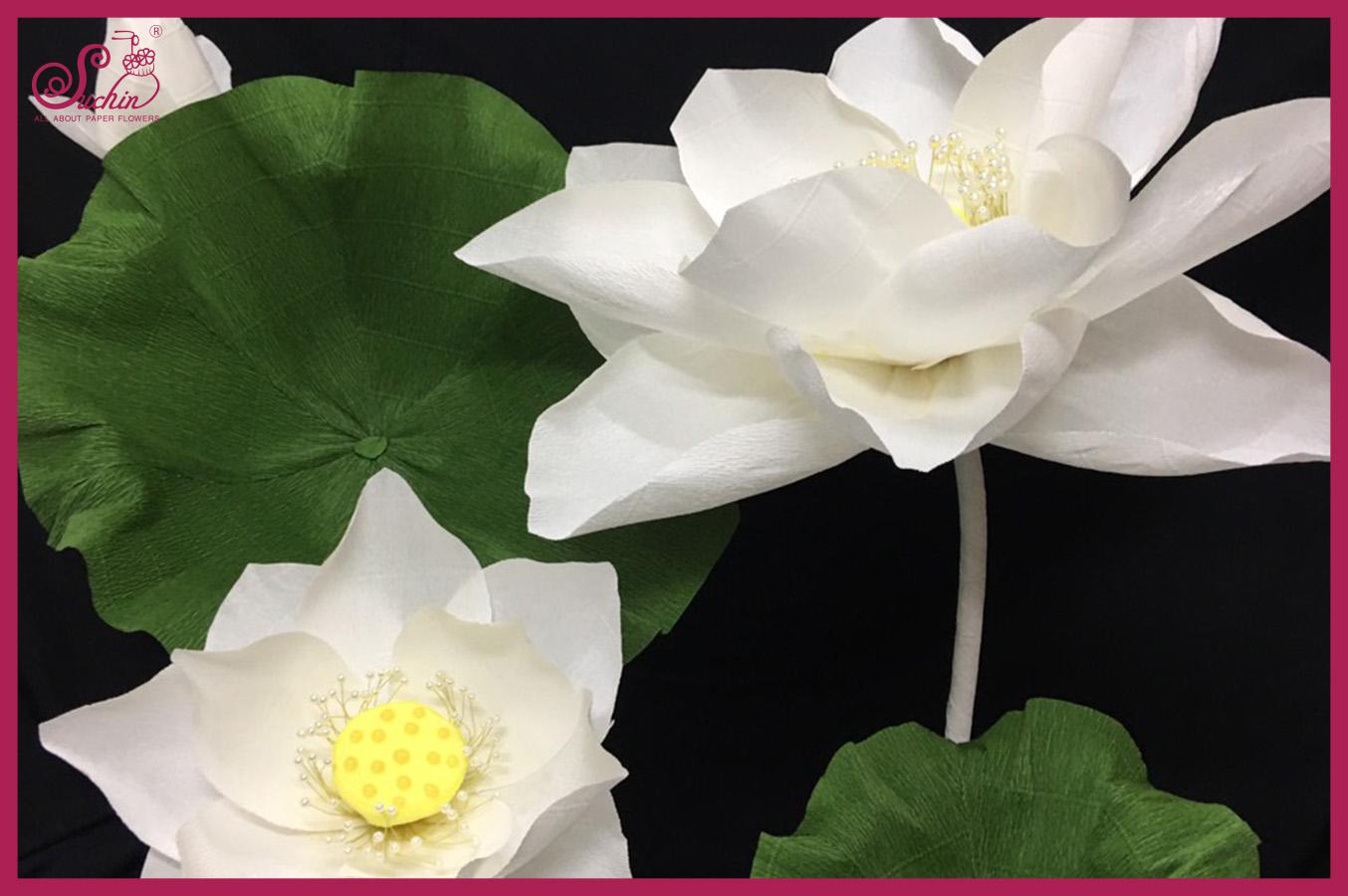 Hoa sen giấy - nền nã, nhẹ nhàng cho các sự kiện truyền thống đất Việt
