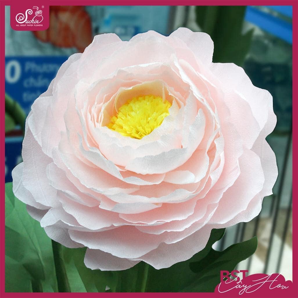 Những điều bạn không ngờ đến về hoa giấy handmade