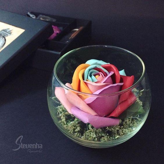 Chọn hoa hợp với tính cách -Loài hoa giấy nào là phong cách của bạn?