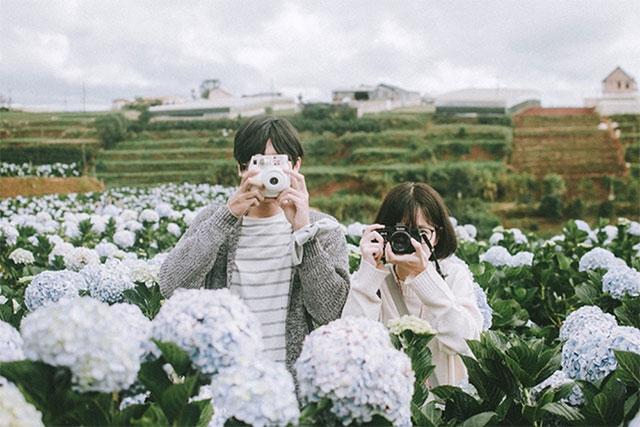 Hướng dẫn 2 cách làm hoa cẩm tú cầu giấy đẹp lại tốn ít chi phí